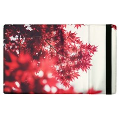 Maple Leaves Red Autumn Fall Apple Ipad 2 Flip Case by Onesevenart