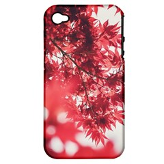 Maple Leaves Red Autumn Fall Apple Iphone 4/4s Hardshell Case (pc+silicone) by Onesevenart
