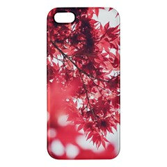 Maple Leaves Red Autumn Fall Iphone 5s/ Se Premium Hardshell Case by Onesevenart
