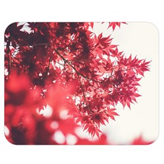Maple Leaves Red Autumn Fall Double Sided Flano Blanket (medium)  by Onesevenart