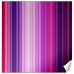 Pink Vertical Color Rainbow Purple Red Pink Line Canvas 12  X 12   by Alisyart