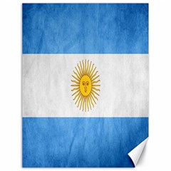 Argentina Texture Background Canvas 18  x 24