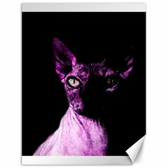 Pink Sphynx Cat Canvas 18  X 24   by Valentinaart