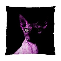 Pink Sphynx Cat Standard Cushion Case (two Sides) by Valentinaart