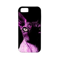 Pink Sphynx Cat Apple Iphone 5 Classic Hardshell Case (pc+silicone) by Valentinaart