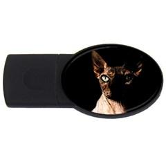 Sphynx Cat Usb Flash Drive Oval (2 Gb) by Valentinaart