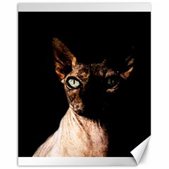 Sphynx Cat Canvas 16  X 20   by Valentinaart