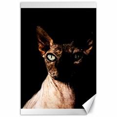 Sphynx Cat Canvas 24  X 36  by Valentinaart