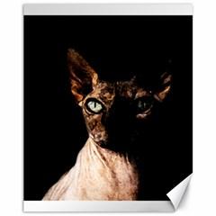 Sphynx Cat Canvas 11  X 14   by Valentinaart