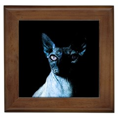 Blue Sphynx Cat Framed Tiles by Valentinaart