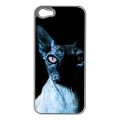 Blue Sphynx Cat Apple Iphone 5 Case (silver) by Valentinaart