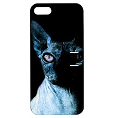 Blue Sphynx Cat Apple Iphone 5 Hardshell Case With Stand by Valentinaart