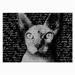 Sphynx Cat Large Glasses Cloth (2 Side) by Valentinaart