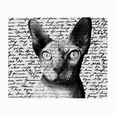 Sphynx Cat Small Glasses Cloth by Valentinaart