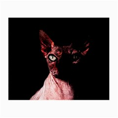 Sphynx Cat Small Glasses Cloth (2 Side) by Valentinaart
