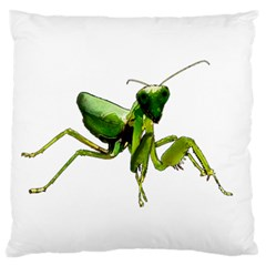 Mantis Large Flano Cushion Case (two Sides) by Valentinaart