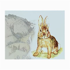 Rabbit  Small Glasses Cloth (2 Side) by Valentinaart