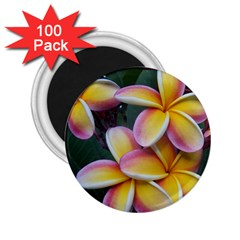 Premier Mix Flower 2 25  Magnets (100 Pack)  by alohaA