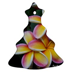 Premier Mix Flower Christmas Tree Ornament (two Sides) by alohaA