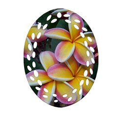 Premier Mix Flower Oval Filigree Ornament (two Sides) by alohaA