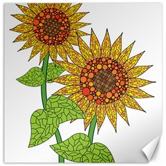 Sunflowers Flower Bloom Nature Canvas 20  X 20   by Simbadda