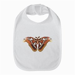 Butterfly Animal Insect Isolated Amazon Fire Phone by Simbadda