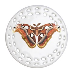 Butterfly Animal Insect Isolated Round Filigree Ornament (two Sides) by Simbadda