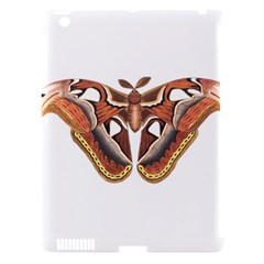 Butterfly Animal Insect Isolated Apple Ipad 3/4 Hardshell Case (compatible With Smart Cover) by Simbadda