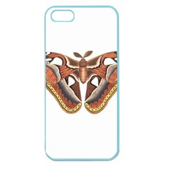 Butterfly Animal Insect Isolated Apple Seamless Iphone 5 Case (color) by Simbadda