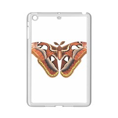 Butterfly Animal Insect Isolated Ipad Mini 2 Enamel Coated Cases by Simbadda