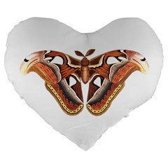 Butterfly Animal Insect Isolated Large 19  Premium Heart Shape Cushions by Simbadda