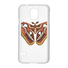 Butterfly Animal Insect Isolated Samsung Galaxy S5 Case (white) by Simbadda