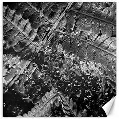 Fern Raindrops Spiderweb Cobweb Canvas 20  X 20   by Simbadda