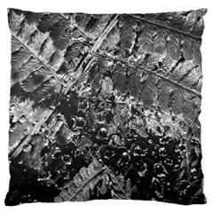 Fern Raindrops Spiderweb Cobweb Large Cushion Case (two Sides) by Simbadda