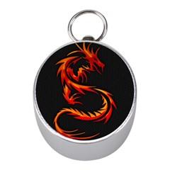 Dragon Mini Silver Compasses by Simbadda