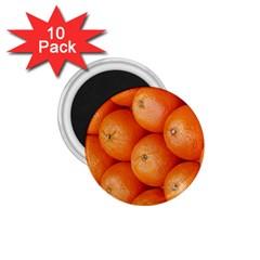 Orange Fruit 1 75  Magnets (10 Pack)  by Simbadda
