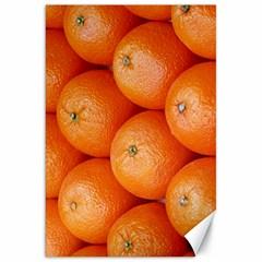 Orange Fruit Canvas 20  X 30   by Simbadda