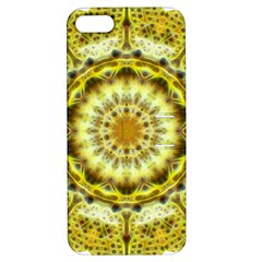 Fractal Flower Apple Iphone 5 Hardshell Case With Stand by Simbadda