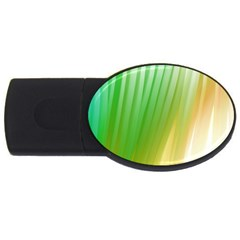 Folded Paint Texture Background Usb Flash Drive Oval (4 Gb) by Simbadda