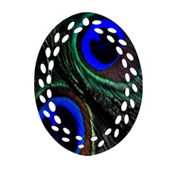 Peacock Feather Oval Filigree Ornament (two Sides) by Simbadda
