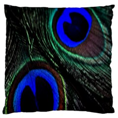 Peacock Feather Large Cushion Case (one Side) by Simbadda