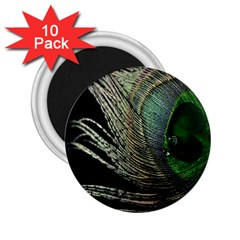 Feather Peacock Drops Green 2 25  Magnets (10 Pack)