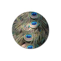 Colorful Peacock Feathers Background Magnet 3  (round) by Simbadda