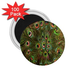 Peacock Feathers Green Background 2 25  Magnets (100 Pack)  by Simbadda