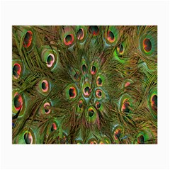 Peacock Feathers Green Background Small Glasses Cloth by Simbadda