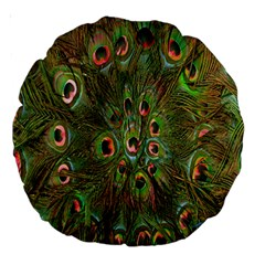 Peacock Feathers Green Background Large 18  Premium Round Cushions by Simbadda
