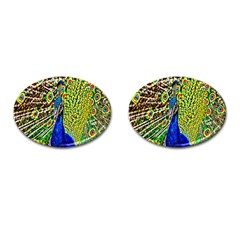 Graphic Painting Of A Peacock Cufflinks (oval) by Simbadda