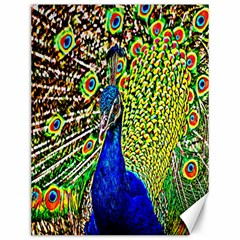 Graphic Painting Of A Peacock Canvas 12  X 16   by Simbadda