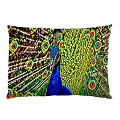 Graphic Painting Of A Peacock Pillow Case (two Sides) by Simbadda
