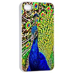 Graphic Painting Of A Peacock Apple Iphone 4/4s Seamless Case (white) by Simbadda